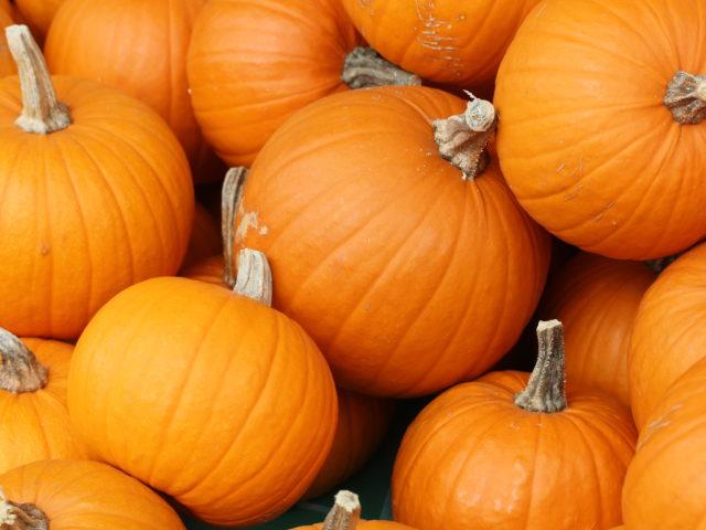 Halloween: un confronto costruttivo